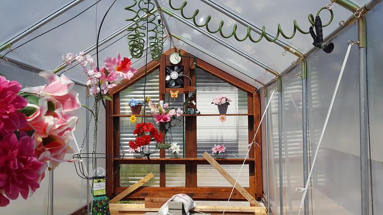 greenhouse outbuilding, 4Season Greenhouses & Outbuildings